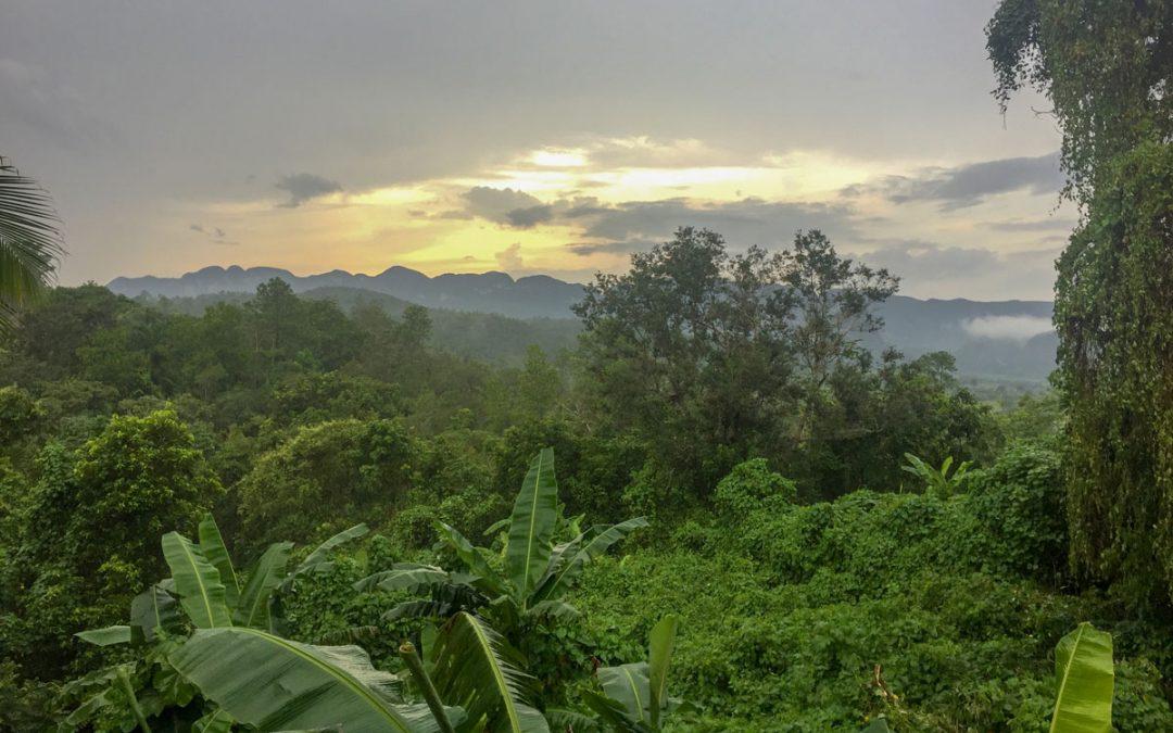 Warum man genau jetzt nach Kuba reisen sollte