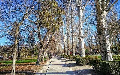Sehenswürdigkeiten Madrid – unsere Top 10 Favoriten