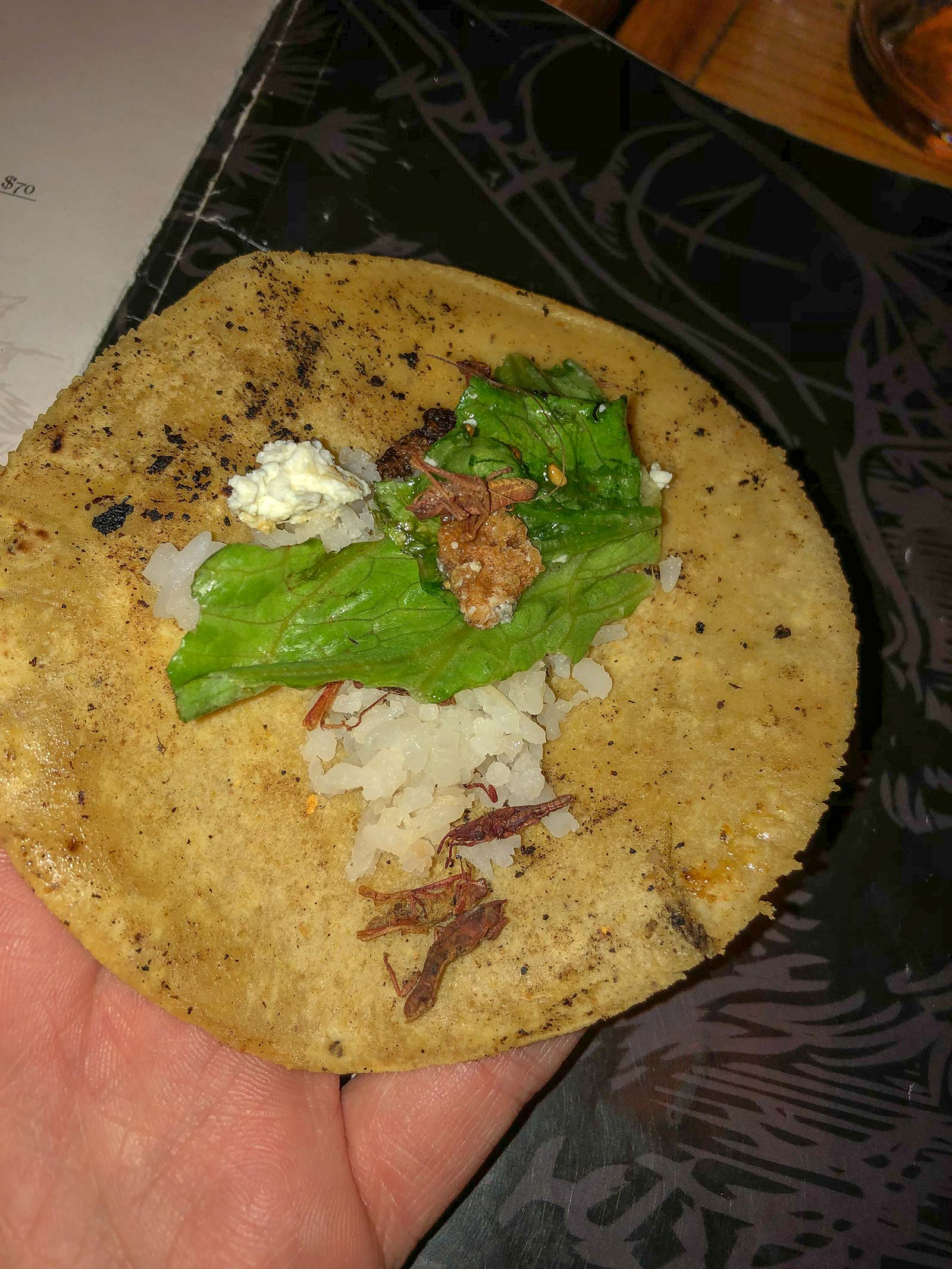 Heuschrecken Chapulinos im Taco