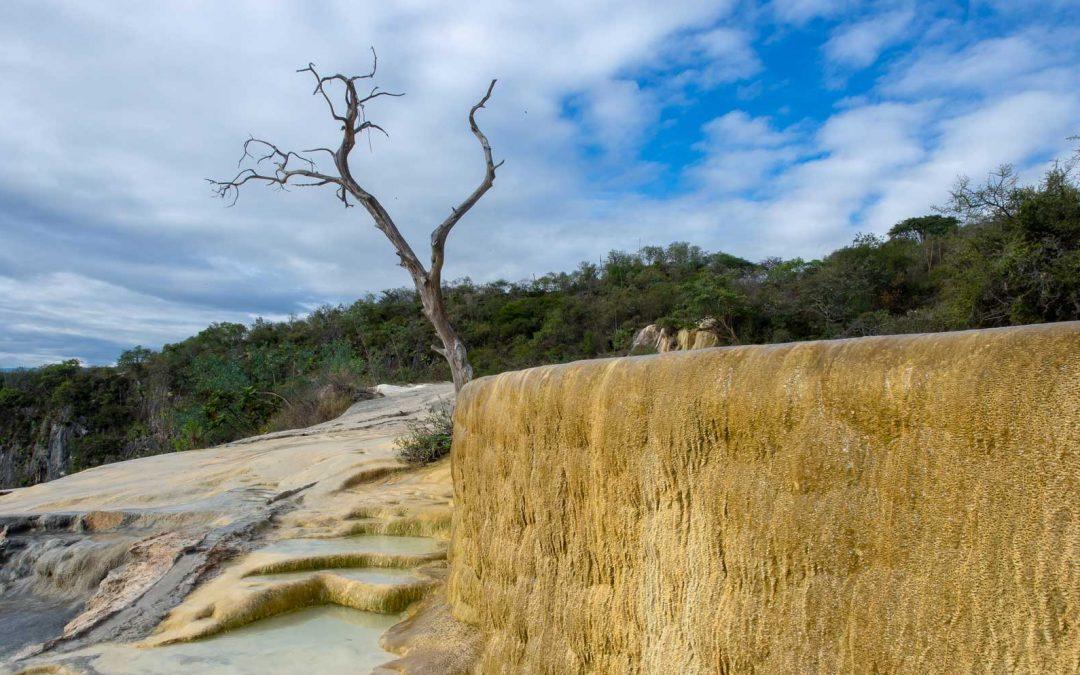 Hierve el Agua Baum