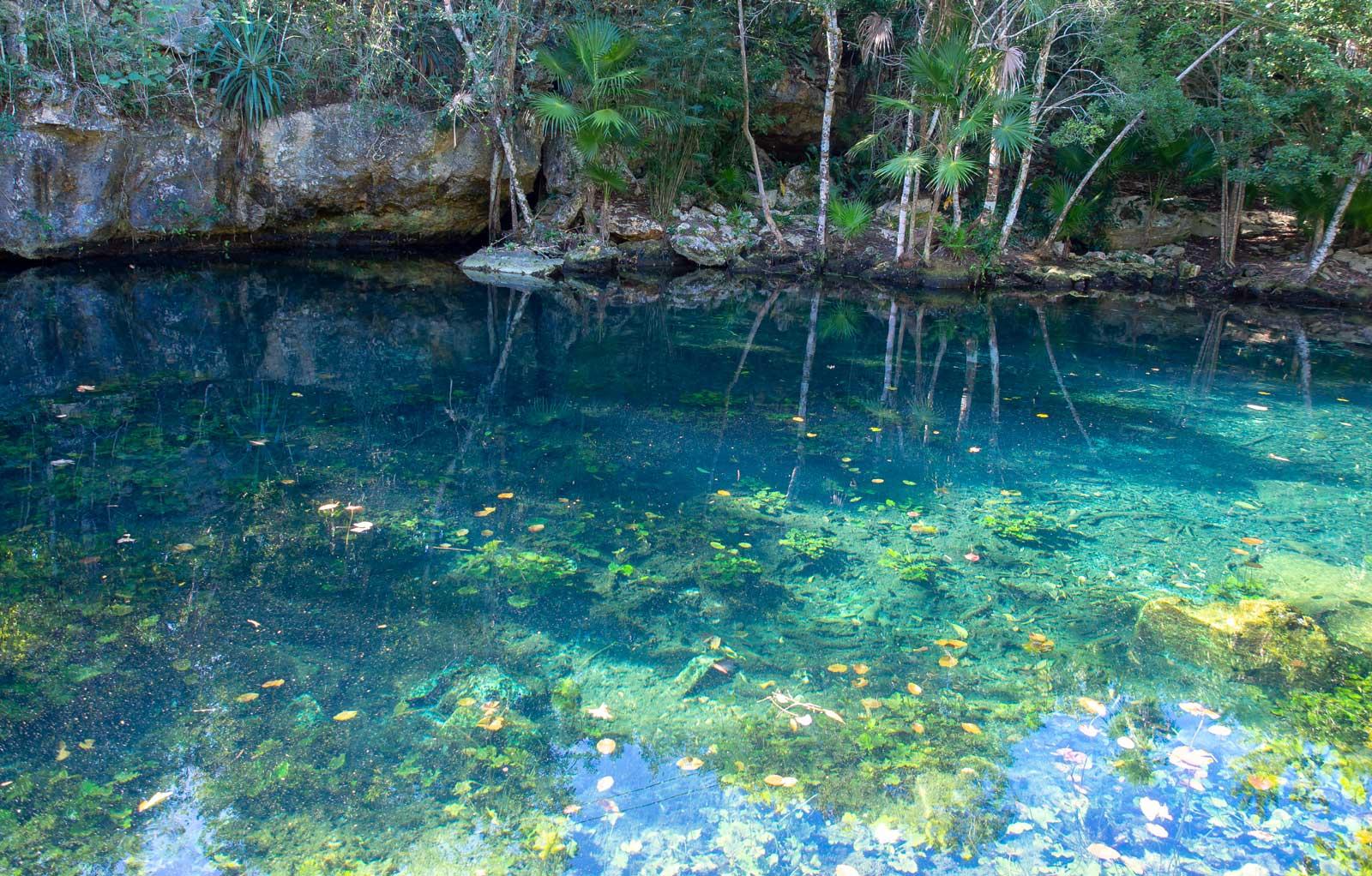 Tauchen in Mexiko - Cenote Eden